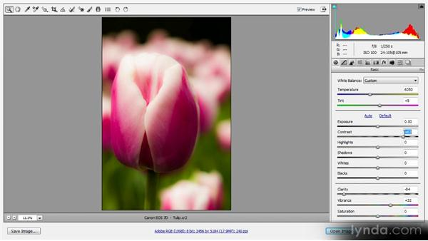 Evaluating with previews: Photoshop CS6 Raw Workshop