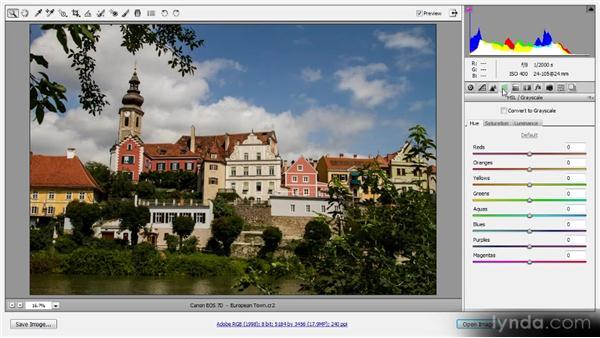 Snapshots: Photoshop CS6 Raw Workshop