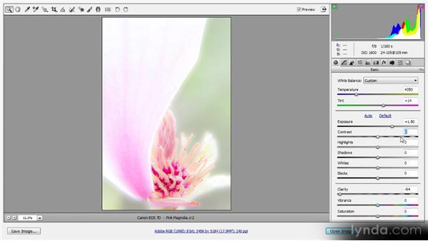 Resetting adjustments: Photoshop CS6 Raw Workshop