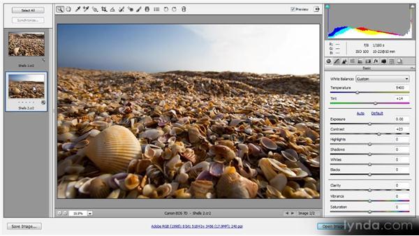 Processing multiple images: Photoshop CS6 Raw Workshop