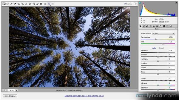 Image rotation: Photoshop CS6 Raw Workshop