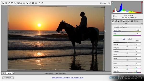 Cropping and straightening: Photoshop CS6 Raw Workshop