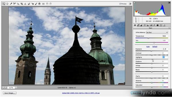 Basic tonal adjustments: Photoshop CS6 Raw Workshop