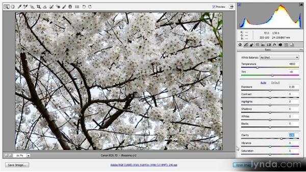 Presence adjustments: Photoshop CS6 Raw Workshop