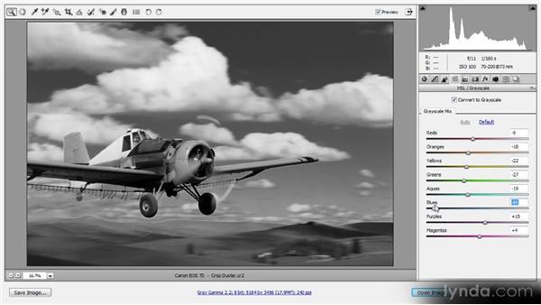Grayscale conversion: Photoshop CS6 Raw Workshop