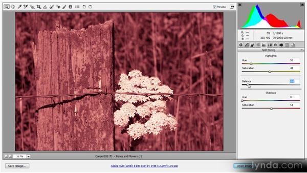 Split toning: Photoshop CS6 Raw Workshop