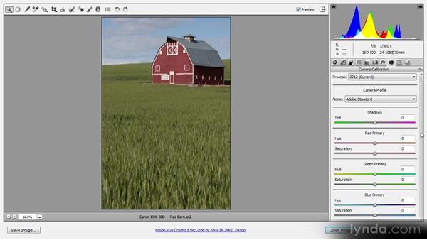 Camera calibration: Photoshop CS6 Raw Workshop