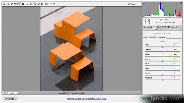 On-image adjustments: Photoshop CS6 Raw Workshop