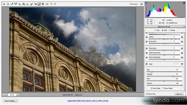 The Adjustment Brush: Photoshop CS6 Raw Workshop