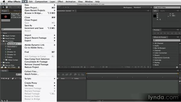 Associate proxy usage: After Effects Artist in Action: Eran Stern's Broadcast Design