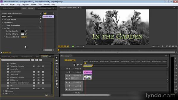 The Tint effect: Premiere Pro CS6 Effects Workshop