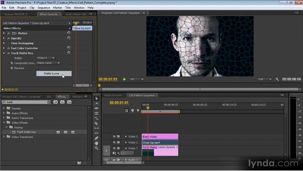 The Cell Pattern effect: Premiere Pro CS6 Effects Workshop