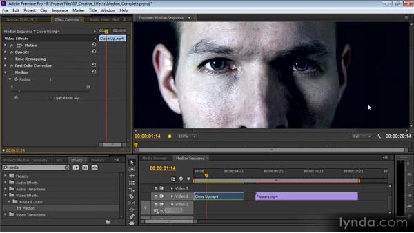 The Median filter: Premiere Pro CS6 Effects Workshop