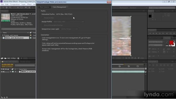 Preparing content for Premiere Pro in After Effects: Video Production with Creative Suite 6