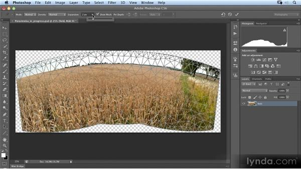 Unwarping the panoramic image: Photoshop Artist in Action: Uli Staiger's Perestroika