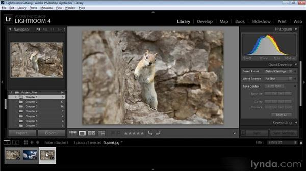 Creating layered documents: Creating Composites in Photoshop