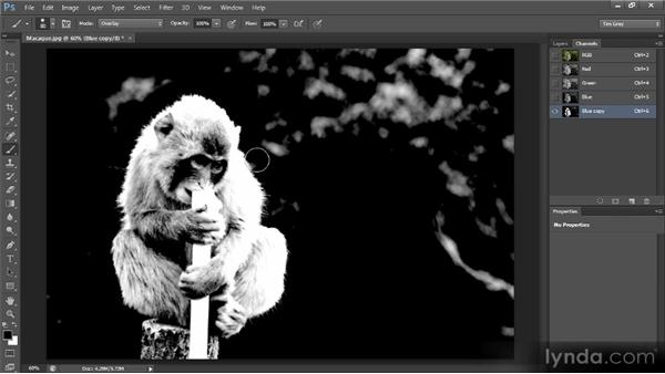 Dodging and burning a mask: Creating Composites in Photoshop