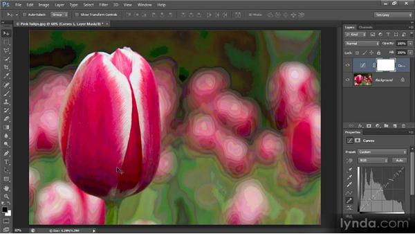 Applying a wild curve: Photoshop Creative Effects and Filters