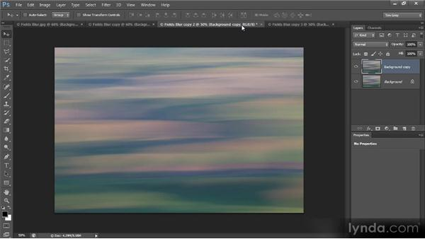 Using the Ripple, Twirl, Wave, and ZigZag filters: Photoshop Creative Effects and Filters