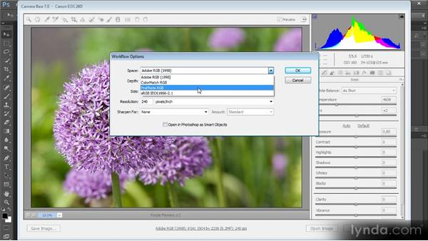 Color settings for RAW conversion: Mastering Color Correction in Photoshop