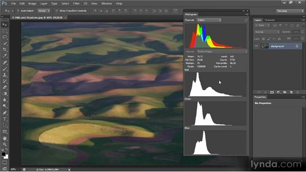 Reading a histogram: Mastering Color Correction in Photoshop