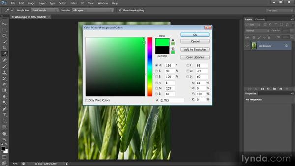 Color models and the color picker: Mastering Color Correction in Photoshop