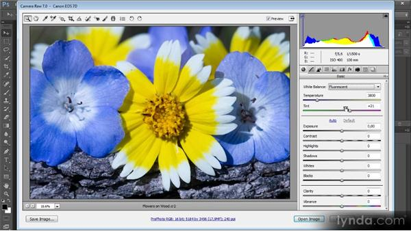 Basic color for RAW images: Mastering Color Correction in Photoshop