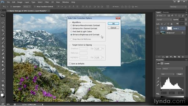 Automatic color with Levels or Curves: Mastering Color Correction in Photoshop