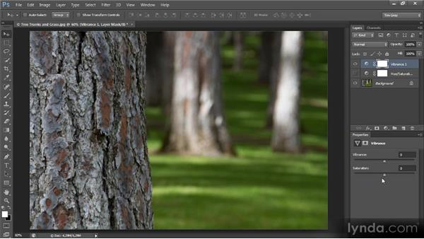 Vibrance vs. saturation: Mastering Color Correction in Photoshop