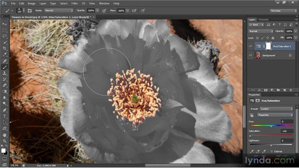 Recovering color detail: Mastering Color Correction in Photoshop
