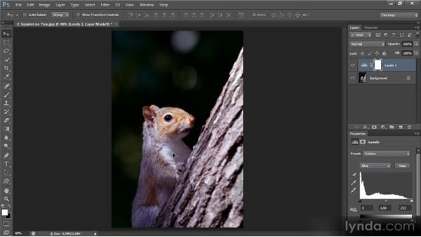 Neutralizing highlights and shadows: Mastering Color Correction in Photoshop