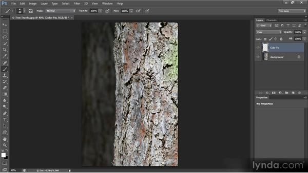 Painting a color fix: Mastering Color Correction in Photoshop