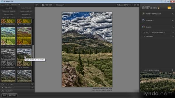 Working with presets: Up and Running with HDR Efex Pro 2.0
