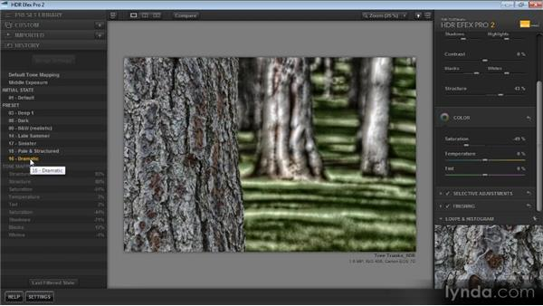 Using the History and Reset options: Up and Running with HDR Efex Pro 2.0