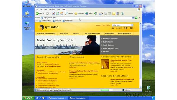 privacy & security strategy: Learning Internet Explorer 6
