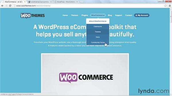 What is WooCommerce?: WordPress Ecommerce: WooCommerce