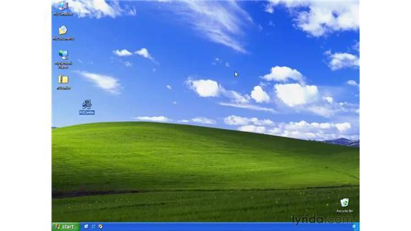 changing the browser skin: Learning Internet Explorer 6