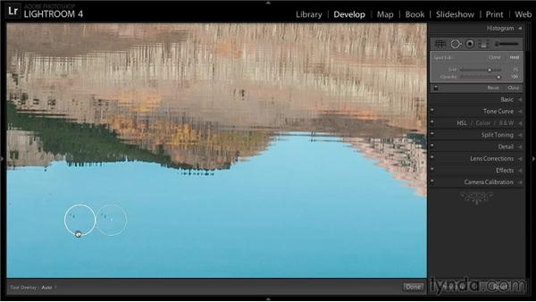 Cleaning up content with the Spot Removal tool: Enhancing a Landscape Photo with Lightroom