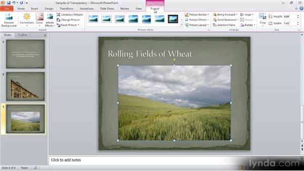 Removing the background in a photo: Up and Running with PowerPoint 2010