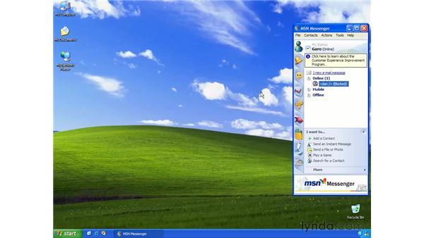 online status: Learning Internet Explorer 6