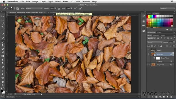 Creating a painterly look with the Diffuse filter: Photoshop for Designers: Filters