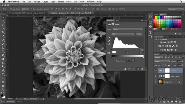 Creating effective solarizations: Photoshop for Designers: Filters