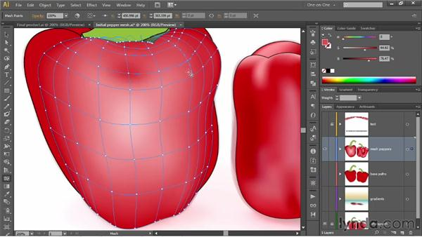 Adding and deleting lines with the Mesh tool: Illustrator CS6 One-on-One: Mastery