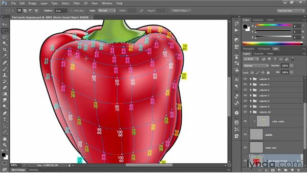 Assigning colors to mesh points: Illustrator CS6 One-on-One: Mastery