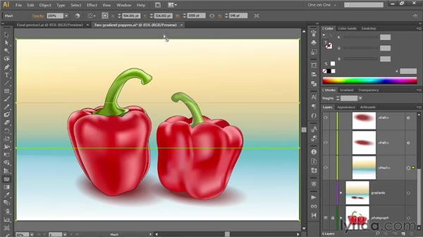 Converting a linear gradient to a mesh: Illustrator CS6 One-on-One: Mastery