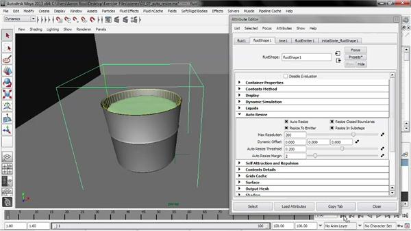 Working with Auto Resize: Liquid Simulation in Maya