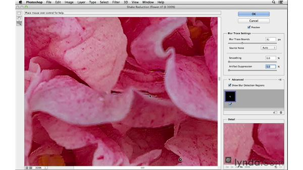 Understanding the Shake Reduction noise sliders: Photoshop for Photographers: 2013 Creative Cloud Updates