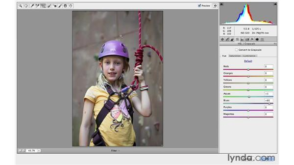 Using Adobe Camera Raw as a Smart Filter: Photoshop for Photographers: 2013 Creative Cloud Updates