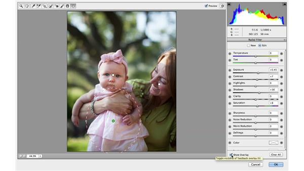 Using the Radial Filter to selectively brighten a photograph: Photoshop for Photographers: 2013 Creative Cloud Updates