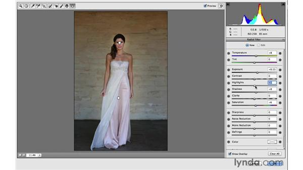 Making multiple Radial Filter adjustments: Photoshop for Photographers: 2013 Creative Cloud Updates